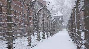 1 Auschwitz 1