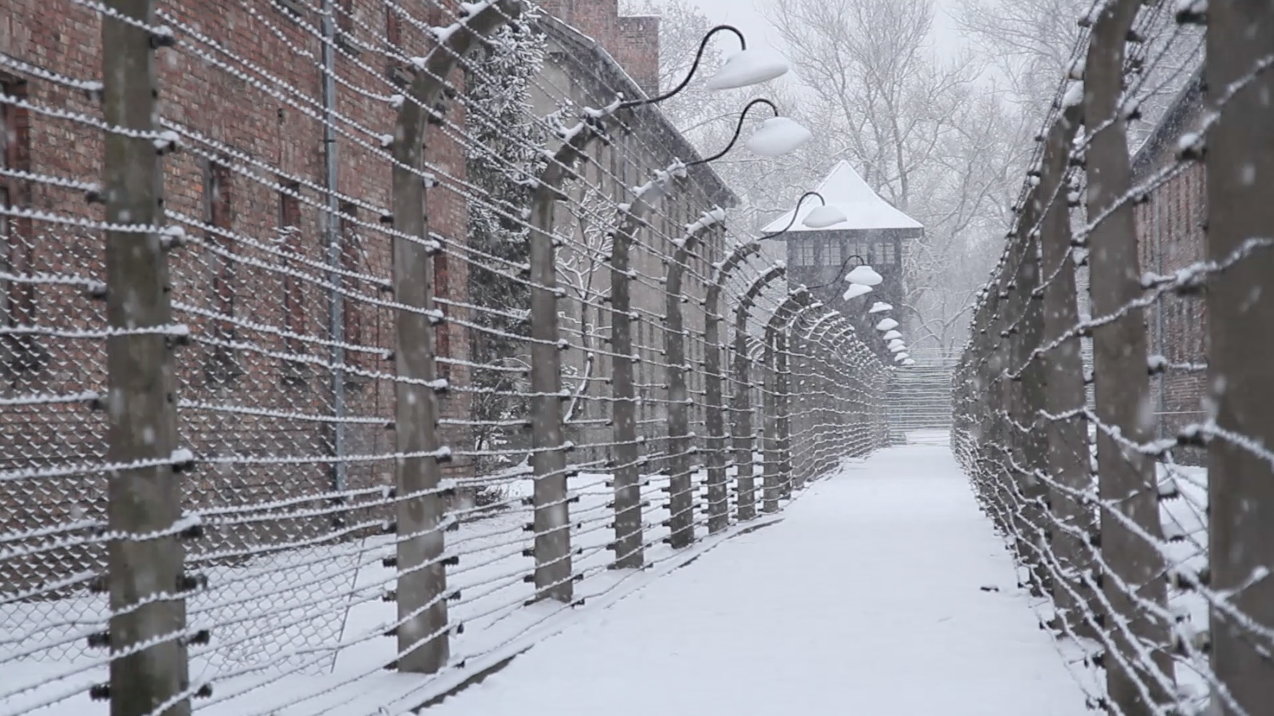 Watch my first feature doc 'After Auschwitz'