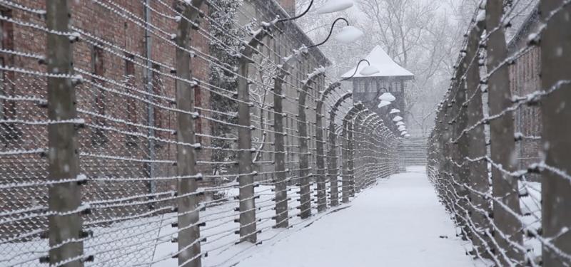 Watch my first feature doc 'After Auschwitz'